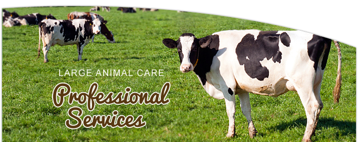 Large Animal Professional Services